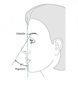 Darstellung der optimalen Gesichts Kompostion in Bezug auf Nase und Kinn.