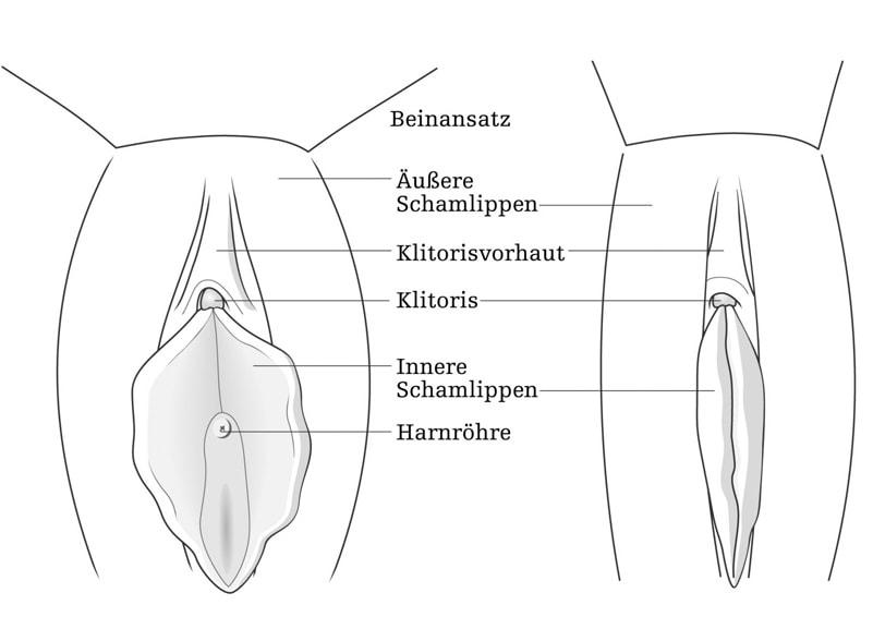 Schamlippenkorrektur Wien / Labioplastik - Dr. Turkof